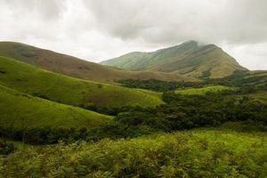Ghé Kudremukh, Ấn Độ: Nơi có mỏ khoáng-thạch anh tím cùng 107 loài chim quý