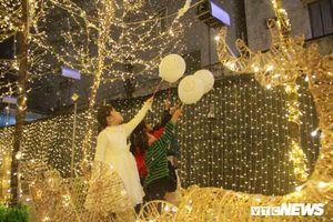 Khu vườn phủ trắng tuyết đẹp lung linh hút giới trẻ Huế trong đêm Giáng sinh