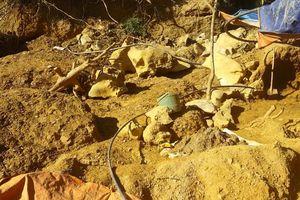 Nghệ An: Vàng tặc nhuộm màu khe Tạ Sỏi