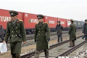 Hai miền Triều Tiên khảo sát bổ sung sau lễ khởi công đường sắt