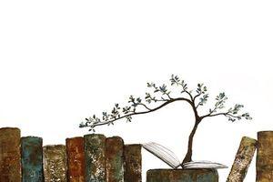 Giấc mộng văn chương quặng thải bao lần