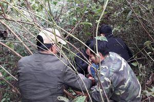 Mật phục khống chế người Lào vận chuyển số lượng lớn ma túy