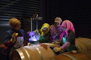 Những người phụ nữ đi đầu trong 'cách mạng rượu vang' Trung Quốc