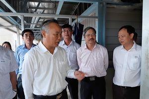 Xây dựng chuỗi sản xuất thịt lợn an toàn dịch bệnh phục vụ XK tại Bình Thuận