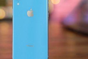 iPhone XR giúp Apple thu hút nhiều khách hàng Android