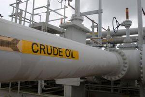 Giá dầu sụt mạnh vì tồn kho dầu Mỹ tăng