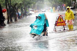 Năm 2019 sẽ xuất hiện nhiều hiện tượng thời tiết cực đoan