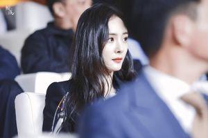Dương Mịch tất bật công việc, Lưu Khải Uy về nhà chăm con sau ly hôn