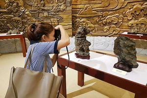 Đà Nẵng: Triển lãm độc đáo 'Đá không biết nói nhưng đá cũng như con người!'