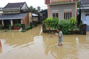 Phú Yên thiệt hại khá nặng do mưa lũ