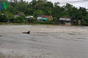 Phú Yên mưa lớn, 1 người mất tích