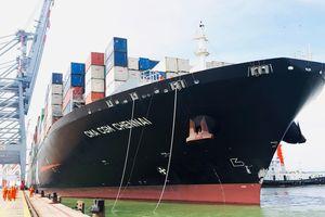 Cảng biển Việt Nam hối hả đón những chuyến tàu đầu năm mới 2019