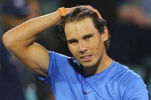 'Người có tuổi' Rafael Nadal lập kế hoạch năm 2019