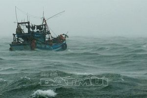 Bão số 1 cách Cà Mau 400km, hơn nghìn tàu cá vẫn trên biển