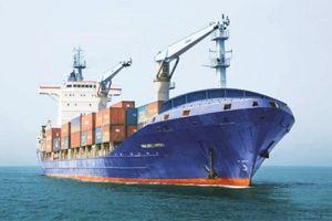 Năm 2018, đón 'tín hiệu vui' từ vận tải biển Việt Nam