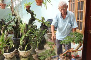 Đam mê nghiên cứu bảo tồn cây cảnh Linh Sam
