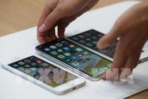 CEO Apple hy vọng đạt doanh thu tốt tại thị trường Việt Nam