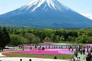 'Thuế tạm biệt' đối với du khách khi rời Nhật Bản sẽ thu bao nhiêu?