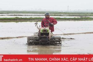 80% diện tích sản xuất lúa xuân Hà Tĩnh hoàn thành khâu làm đất