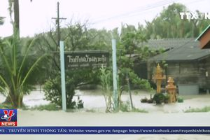 Bão Pabuk càn quét bở biển phía Nam Thái Lan