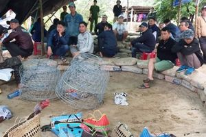 Đà Nẵng: Đột kích sới gà, bắt giữ hơn 20 đối tượng đánh bạc