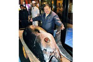 'Vua sushi' mua cá ngừ kỷ lục 3 triệu USD tại phiên đấu giá năm mới ở Nhật Bản