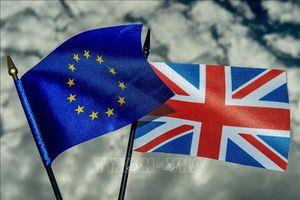 Đa số người Anh muốn tổ chức cuộc trưng cầu ý dân lần hai về Brexit