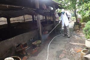Không phát sinh ổ dịch LMLM mới tại xã Thanh Tân