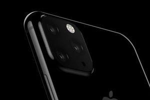 Đây có thể là hình ảnh mặt lưng của iPhone XI