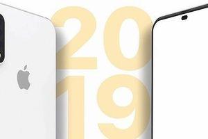 iPhone với màn hình phủ kín mặt trước có thể sẽ là tương lai của thiết bị di động