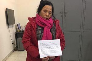 Lật tẩy 'nữ quái' giúp việc theo giờ gây ra hàng loạt vụ trộm cắp tài sản