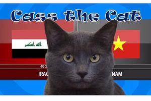 'Mèo tiên tri nước Anh' dự đoán tuyển Việt Nam đánh bại Iraq