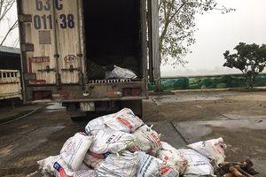 Bắt xe tải chở gần 1 tấn chân trâu bò bốc mùi đưa đi TP.HCM tiêu thụ