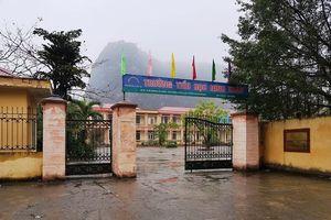 Ninh Bình: 12 học sinh bị chó cắn ngay tại sân trường