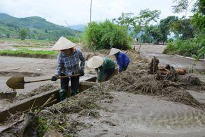 Văn Chấn (Yên Bái): Chủ động đảm bảo nước tưới tiêu vụ Đông Xuân