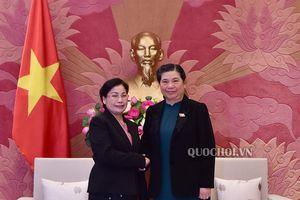 Phó Chủ tịch Thường trực Quốc hội Tòng Thị phóng tiếp Chủ tịch Kiểm toán Nhà nước Lào