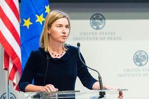 Căng thẳng quan hệ EU - Hoa Kỳ đạt đến ngưỡng bê bối ngoại giao?