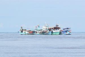 Tin thêm về 3 tàu cá, cùng 21 ngư dân bị bắt giữ khi tránh bão