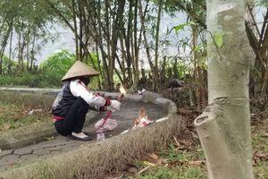 Đời cay đắng của cô gái chết trong vườn hoa Hà Đông