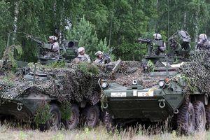 NATO xây dựng đội quân hùng mạnh chỉ để đối phó với Putin?