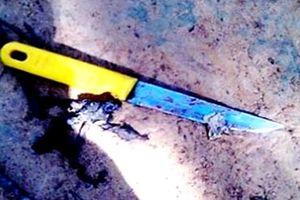 Tranh cãi về chiếc điện thoại mới mua, hai người bị đâm tử vong