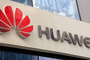 Ba Lan bắt giám đốc Huawei về tội 'làm gián điệp'