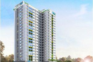 Tỉnh thành phải công bố tính pháp lý các dự án bất động sản