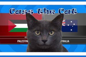 Dự đoán kết quả bóng đá trận Palestine vs Australia hôm nay của mèo Cass