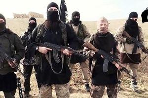 Ai Cập xác nhận bắt giữ 2 công dân Đức nghi tìm cách gia nhập IS