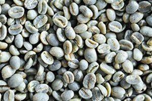 Cà phê vẫn là mặt hàng xuất khẩu số 1 của Việt Nam vào Algeria năm 2018
