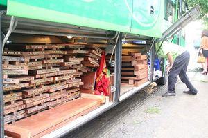 Giấu hơn 10 m3 gỗ trong khoang hành lý xe giường nằm