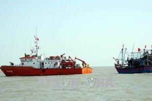 Bà Rịa - Vũng Tàu: Tìm kiếm 10 thuyền viên mất tích trên chiếc tàu bị chìm