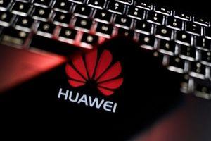 Huawei bất ngờ sa thải nhân viên người Trung Quốc bị Ba Lan bắt giữ