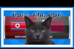 Mèo Cass 'tiên tri' kết quả trận Triều Tiên vs Qatar tại ASIAN CUP 2019